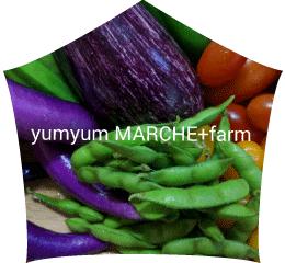 yumyum MARCHE +farm